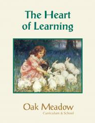 Heart of Learning